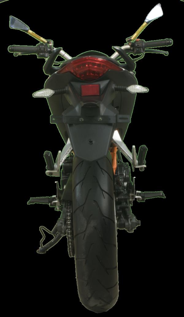 Barracuda 250 - 2019
